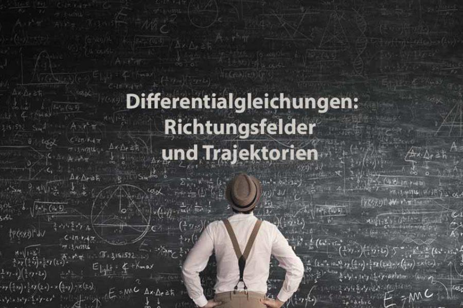 Mathematik 2 | Differentialgleichungen: Richtungsfelder und Trajektorien