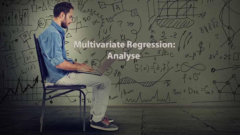 Data Analysis | Multivariate Regression: Analyse