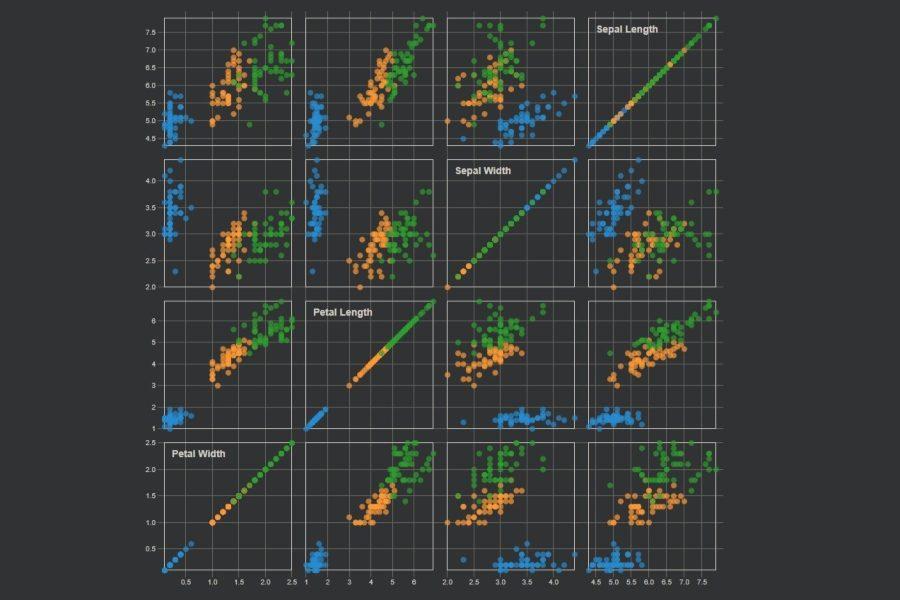 Interaktiv: Scatter-Matrix Iris-Datensatz